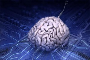 cerebrointernet